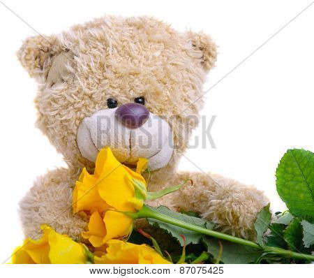 Soft Toy Teddy Bear With A Bouquet Of Yellow Roses