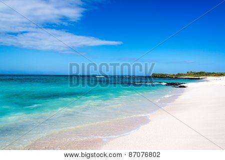 White Tropical Beach