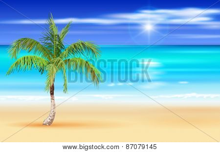 Palm tree on the deserted tropical beach - azure ocean, blue sky with white fluffy clouds, white sand