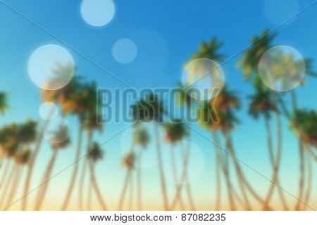 Coconut Palms Blur