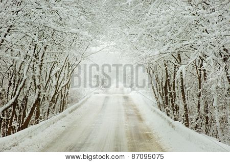 Countryside Road At Winter