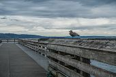 image of dash  - View of the pier at Dash Point Washington with overcast skies and the Puget Sound - JPG