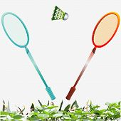 stock photo of shuttlecock  - an illustration of a pair of badminton rackets and a shuttlecock in the air with a grass background - JPG