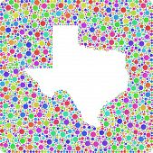 picture of harlequin  - Decorative map of Texas  - JPG