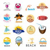 pic of beach shell art  - biggest collection of vector icons beach palm trees sea - JPG