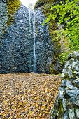 stock photo of yakima  - View from the bottom of the Horsetail Falls Yakima Washington USA cascading down a basalt cliff into a small pool below with a foreground of colorful fall leaves - JPG