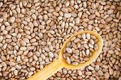 picture of pinto bean  - Close up Plenty of Rich in Fiber and Fat Free Brown Pinto Beans with Wooden Spoon - JPG