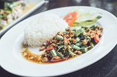 image of gai  - Close up Thai spicy food basil chicken fried rice recipe  - JPG