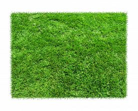stock photo of grass area  - Empty green grass blank isolated model - JPG