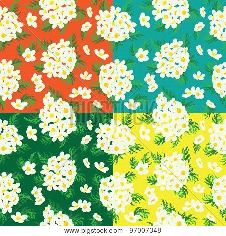 Seamless Floral Pattern Of Camomile.