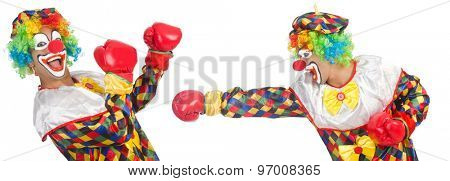 Clowns with boxing gloves isolated on white