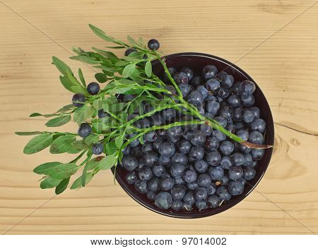Wild Berries Of Bilberry