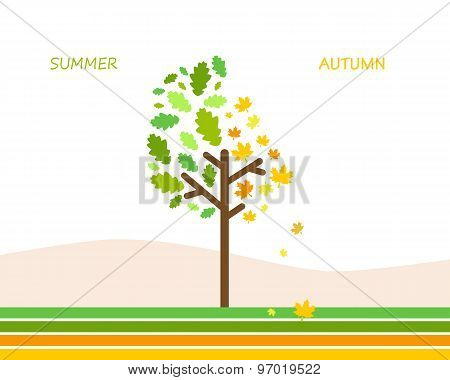 Tree on a white background color changes of the leaves. Vector illustration