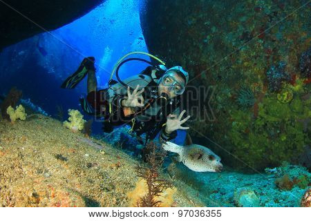 Woman scuba diver exploring underwater cavern and puffer fish
