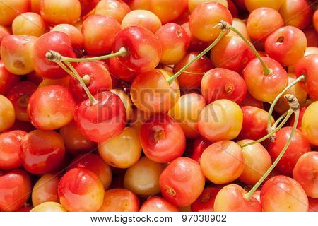 Background with red-yellow cherry