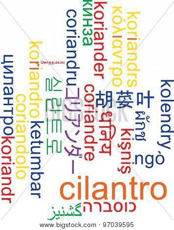 Background concept wordcloud multilanguage international many language illustration of cilantro