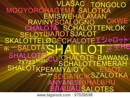 Background concept wordcloud multilanguage international many language illustration of shallot glowing light
