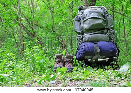 Touristic backpack on green grass in forest