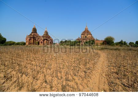 Tourist visit temples in Bagan