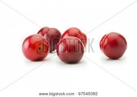 Very ripe fresh harvested plums, isolated on white. Five shiny red plums on white surface.