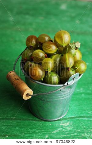 Green gooseberry in pail on wooden background