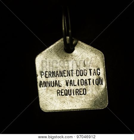 Permanent Dog Tag