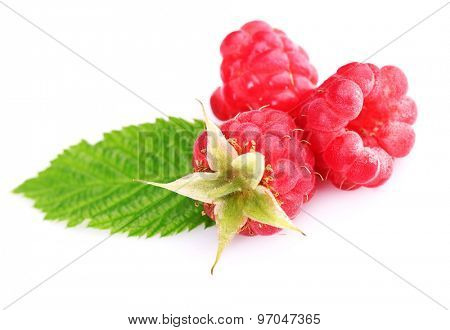 Ripe red raspberries with leaf isolated on white