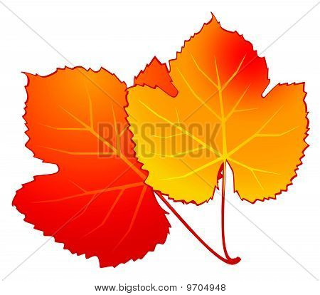 Background with abstract autumnal leaves for a design