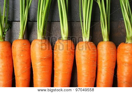 Row of fresh organic carrots, closeup