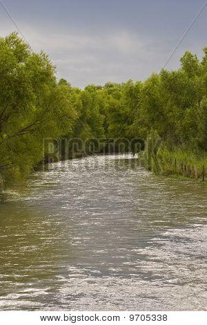 Nazas River