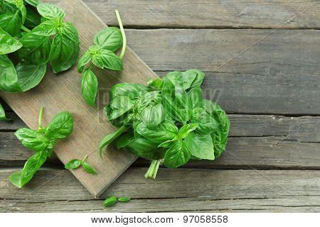 Green fresh basil on wooden background