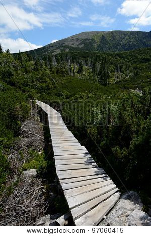 Wooden Bridge On Trail In Karkonosze Mountains