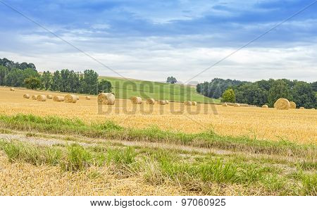 Rural Landscape With Field Path And Hay Bales.