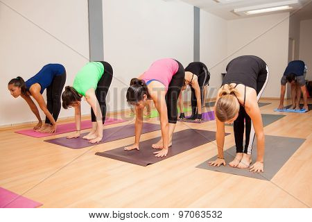 Active Young Adults During Yoga Class