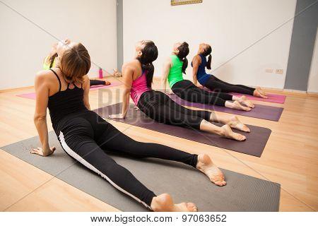 Cobra Pose In Yoga Class
