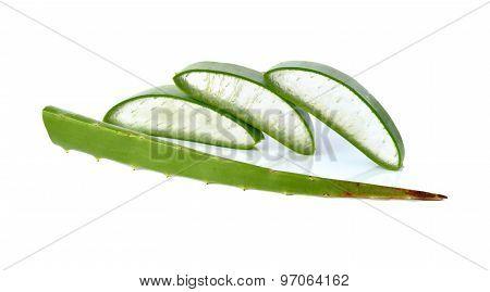Portion Cut Fresh Aloe Vera Leaf On White Background