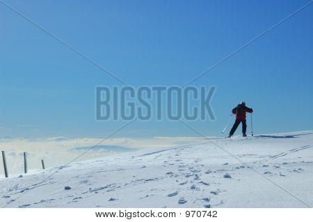 Jurassic Skier