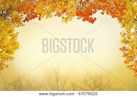 red and yellow fall foliage half frame on light background
