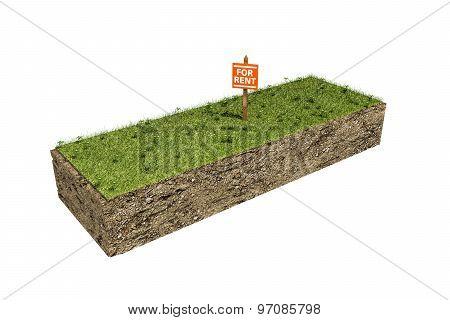 Piece Of Soil