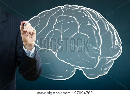 Close up of businessman drawing human brain on screen