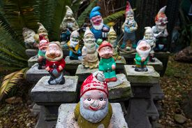 foto of gnome  - a group of colourful garden gnomes found in a cummunity garden in St Kilda Melbourne - JPG