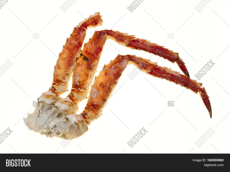 crab meat shell crab legs closeup image u0026 photo bigstock