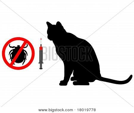 Cat Tick Vaccination