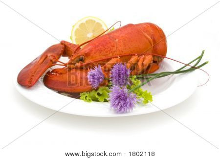 Lobster & Chives