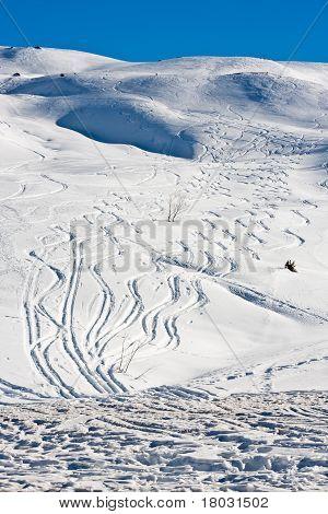 Tracks In Creamy Snowscape