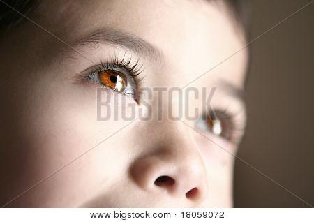 Closeup of beautiful brown eyes belonging to a child.