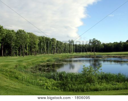 Forest Golf Course