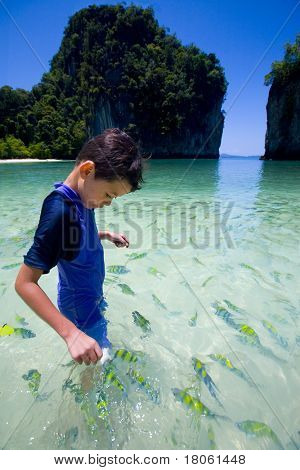Young boy feeding colorful tropical fish in a blue lagoon.