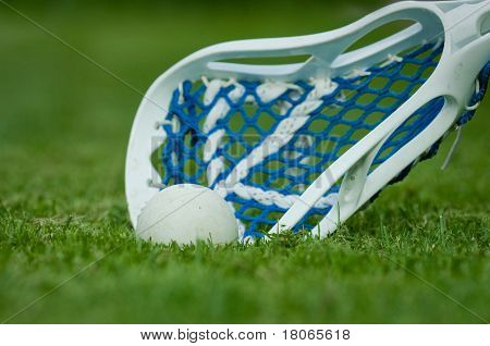Lacrosse Stick With Ball On Grass
