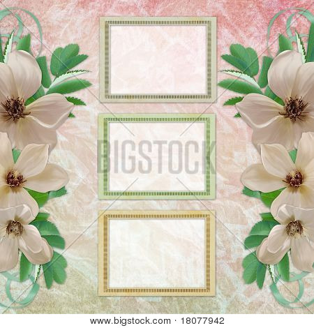 Summer Background With Frame And Flowers